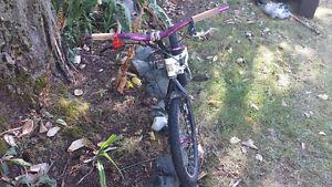 Trials Bike (ZHI ZM2) - $600 OBO