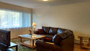 FURNISHED condo apartment - 2 bedrooms - wifi, cable TV, monthly