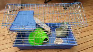 Guinea pig cage with accessories
