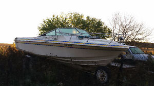 Used Well Craft Nova 250 Boat With Trailer