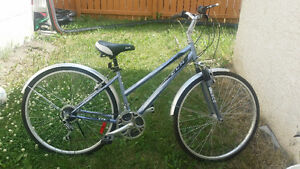 """26 """" adult road bike in excellent condition"""