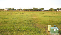 Only $129,900!!! 1.74 acres lot in West St Paul on a paved road