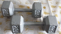 DUMBELL 2 X 20 LBS