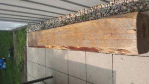 Douglas fir beam