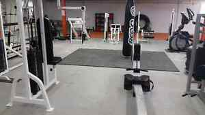 Attention Personal Trainers - Fully Equipped Space for Rent Kitchener / Waterloo Kitchener Area image 10