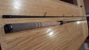 9.6' Fenwick  HMX fishing rod