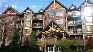 Spacious condo in Yorkson Creek (Langley) urban village
