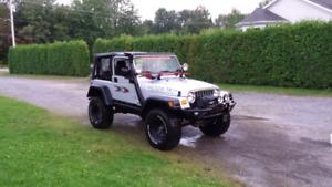 Jeep tj  rocky mountagne