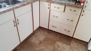 Wanted! Does Anyone have these cabinets?!