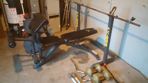 Apex bench with 350 pounds in weight and more