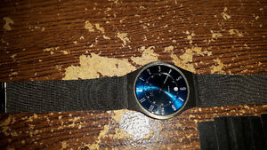 Skagen blue face.