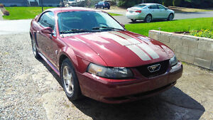 2004 Ford Mustang 40th Anniversary special Coupe (2 door)