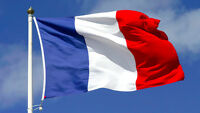 Cheap French Tutoring courses per hour - French native teacher !
