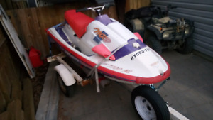 Yamaha wave radier 700 project with trailer