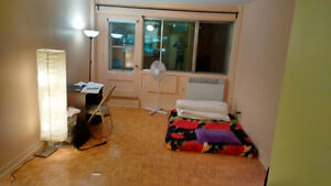 Furnished studio in McGill Ghetto for summer- sublet !
