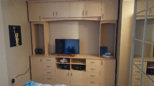 Beautiful Teak Wall unit/entertainment centre