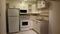 Two  Bedrooms basement suite For Rent $1300 In Summer Side