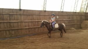 Summer horse camp only has a few spaces left