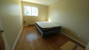 One Bed Room for Rent in a 2 BR Large Apartment in Deep River