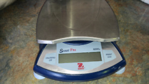 Scout Pro Scale