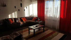 Renovated 41/2 CSL Pet allowed/ 41/2 renovee CSL ANIMAUX ACCEPTE