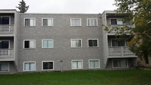 Nice and Neat 2 bedroom in Lacombe