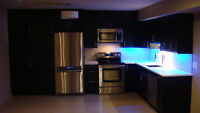NEWLY RENOVATED! OPEN CONCEPT! 6 APPLIANCES! 900+ SQ. FT. 1 BED