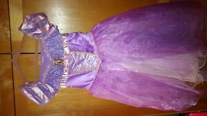 Rapunzel Disney Store Costume