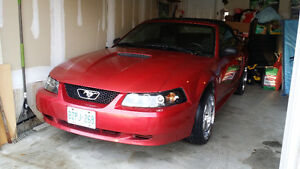2002 Ford Mustang convertable Convertible