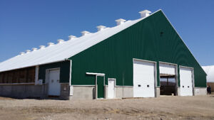 Dairy Barns and Shelter Buildings