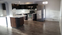 Bright, newly renovated ground level walk-out basement apartment