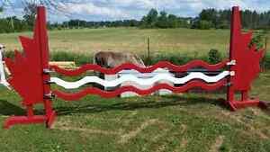 Custom made horse jumps  Kingston Kingston Area image 2