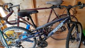Racing bike and mountain bike