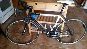 Carbon Argon road bike