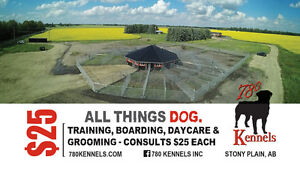 Dog Kennels Edmonton. Why 780's Dog Kennels?