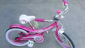 Girls bike - 16 inches tire. Excellent condition