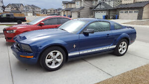 2008 Ford Mustang Coupe 4.0L Never Winter Driven Purrs