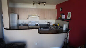 Beautiful Apartment Downtown, May 1st - August 31st Only!!