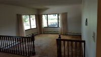 Rooms for Rent Near University - Include Utilities/Internet/Food