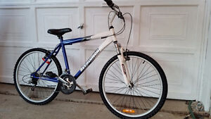 2 ADULT BIKES, MOUNTAIN BIKEs, n more    I DELIVER
