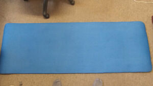 Sleeping mat for camping or home Windsor Region Ontario image 2