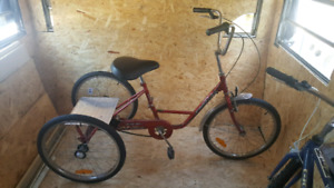Trike bicycle for sale