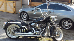 2008 harley softail duluxe
