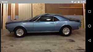 Looking for nice wheels for my 67 firebird