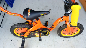 Tigger bike