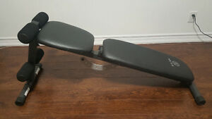 Gold's Gym XR 5.9 Decline Bench FID London Ontario image 1
