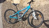 "Youth Mtn. Bike - Trek MT 220 (24"" Wheels)"