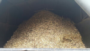 Free Mulch South Oakville Today
