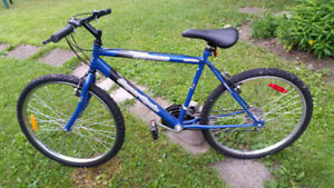 Bicycle for Sale $85