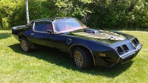1979 Pontiac Trans Am  FEELER ADD